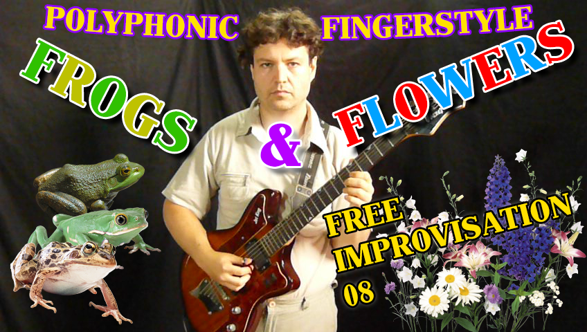 frogs and flowers - fingerstyle free improvisation guitar